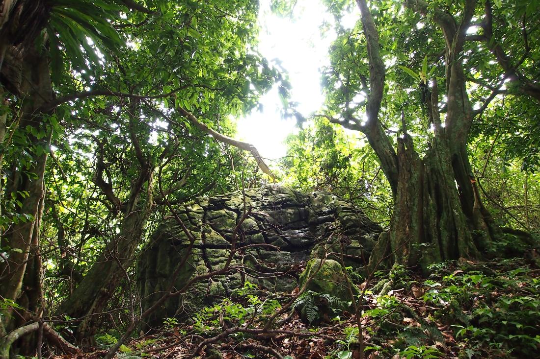 Ancient rock